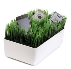tech-gadgets-2-grass-dock-250