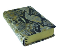 religion-goes-trendy-python-bible-250-v2